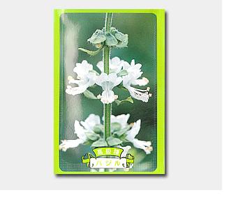 名入れ花の種