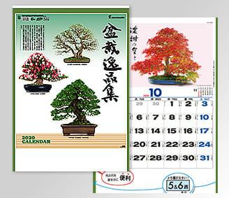 盆栽逸品集 [商品No.463] TD-665