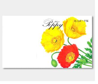 名入れ花の種ポピー